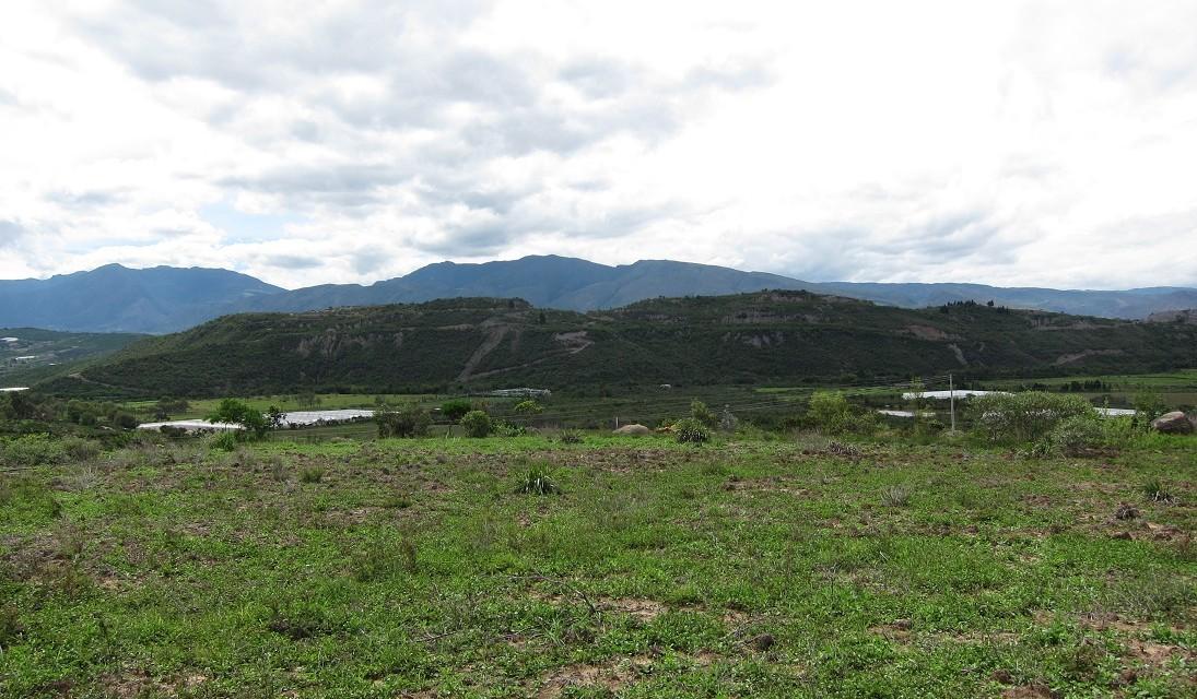 Lote de 20.000 M2 en zona de viñedos a 15 minutos de Villa de Leyva