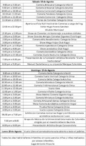 programa festival de cometas