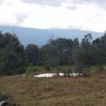 Lotes El Roble a 3.5 kms de Villa de Leyva