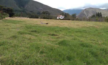 Bellísimo Lote de 10.450 metros a 15 minutos de Villa de Leyva
