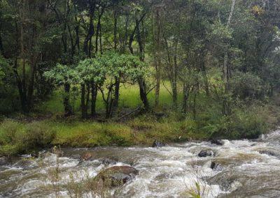 rancho-nuevo-rio2-alojamiento-alquiler-cabañas-villa-de-leyva-fincas-de-la-villa-1